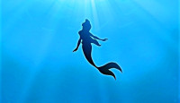 Poster-the-little-mermaid-18652024-767-1042
